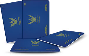 Thai Work Permit Application